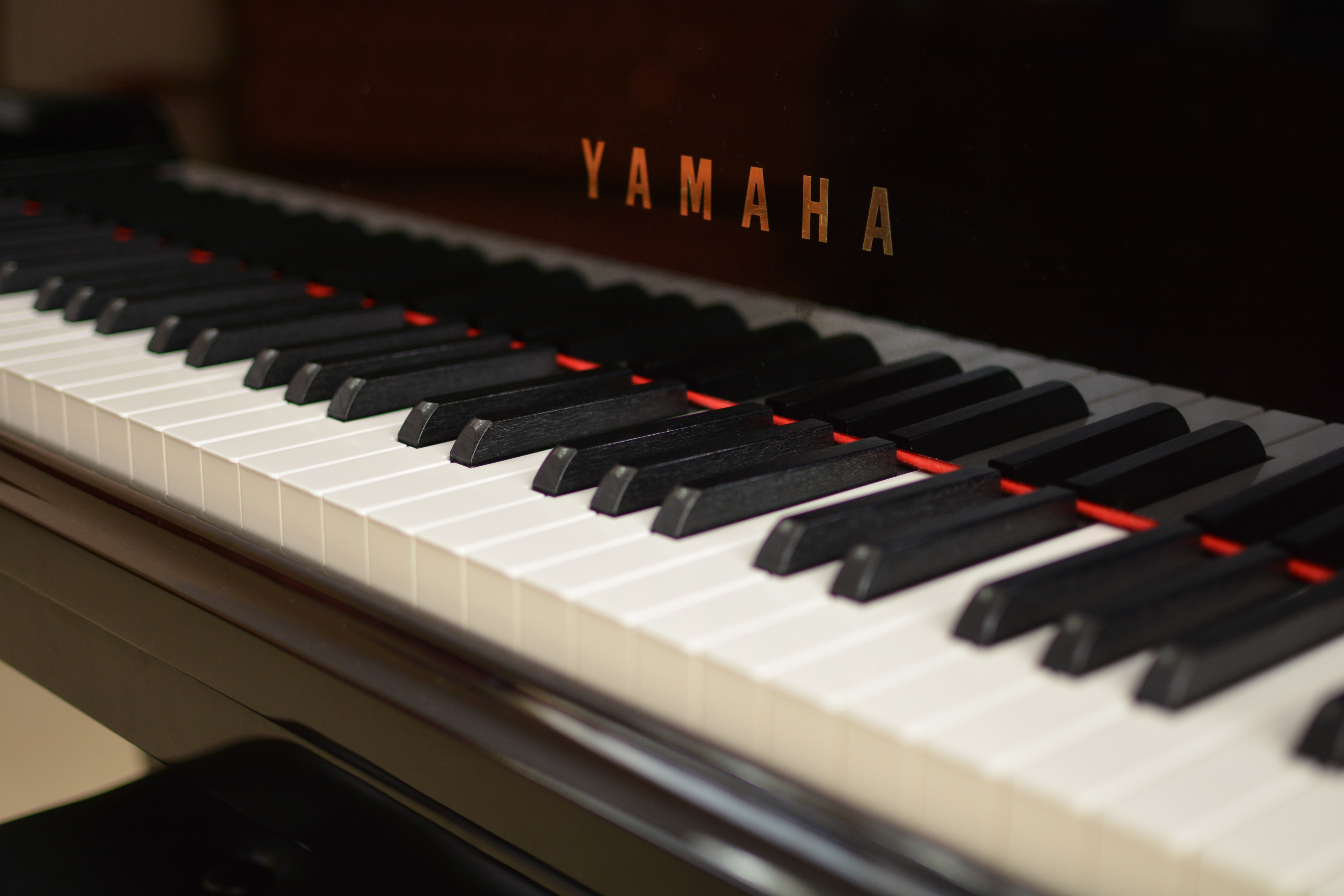 The Yamaha Range